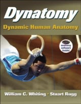 Dynatomy: Dynamic Human Anatomy