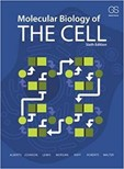 Molecular Biology Of The Cell - 6th Edition